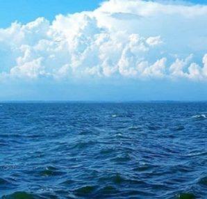 Μετά από αυτό δεν θα ξαναμπείτε ποτέ στην θάλασσα... - Περίεργα-Funny