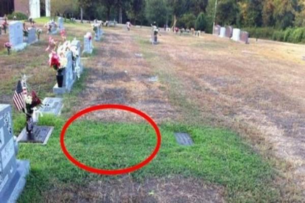 Αυτή η μάνα απορούσε χρόνια γιατί ο τάφος του γιου της είναι πράσινος - Όταν έμαθε την αλήθεια της πάγωσε το αίμα! - Περίεργα-Funny
