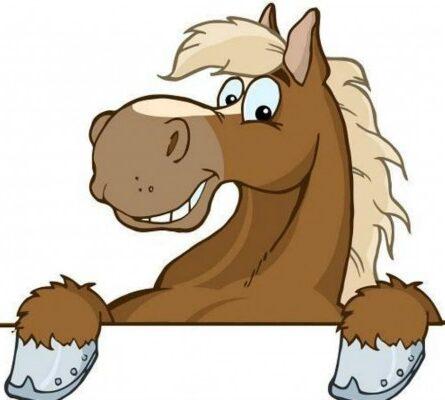 Το άλογο και ο γάιδαρος: Tο ανέκδοτο της ημέρας (06/01) - Περίεργα-Funny